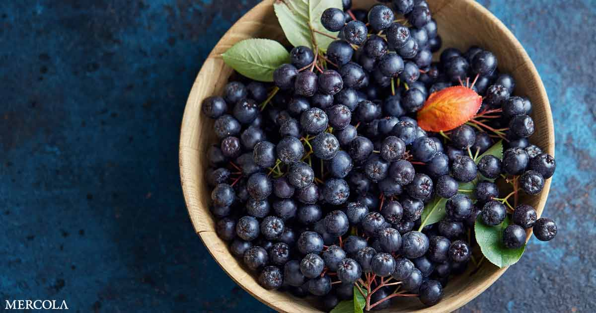 Aronia Berries Can Reduce Oxidative Stress