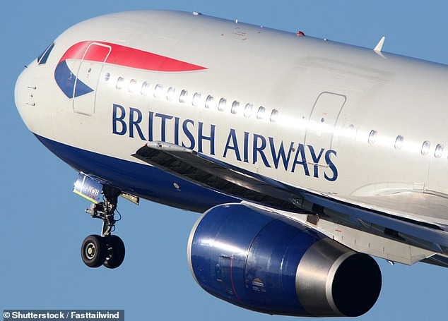 Making changes:Sources said that new BA chief executive Sean Doyle will operate fewer flights from Gatwick
