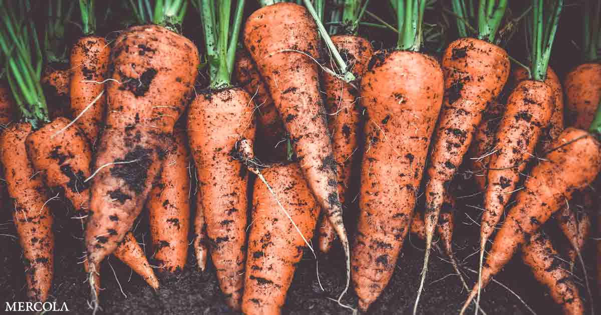 Can Carrots Assist Fight COVID?
