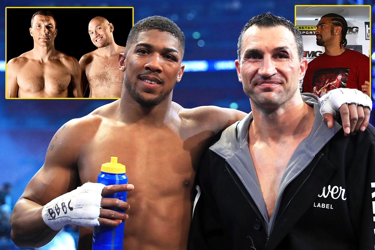 Wladimir Klitschko heaped praise on Anthony Joshua, but blasted 'imbecile' Tyson Fury and 'disgraceful' David Haye when he spoke about heavyweights after their famous fights